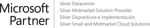 Logo Microsoft Partner y nuestras competencias